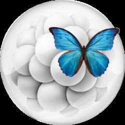 uvira.regenerationmatrix.org